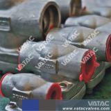L'acciaio inossidabile NPT ha forgiato la valvola di ritenuta