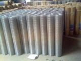 Оцинкованный сварной сетки для строительства