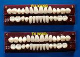 Denti in resina acrilica