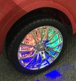 Maserati genehmigte Kind-Fahrt auf Auto-Spielzeug mit entfernter Station
