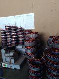 Kleiner Coreless 200W 12V/24V Dauermagnetgenerator/Drehstromgenerator