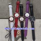 주문 설계하십시오 여자 (WY-023D)를 위한 시계 가죽 호화스러운 손목 시계를