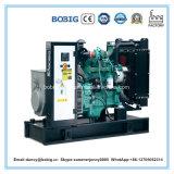 판매를 위한 OEM 가격 100kVA 발전기