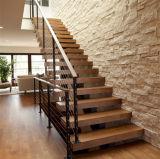 Конструкция лестницы луча двойной плиты лестницы самомоднейшей стильной проступи твердой древесины прямая