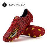 جديد تصميم [هيغقوليتي] خارجيّ كرة قدم حذاء, كرة قدم لباس كرة قدم أحذية