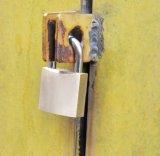 堅くされた鋼鉄手錠によって調整される別のパッドロックが付いている固体黄銅