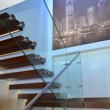 セリウムの証明書のFramelessの手すりの柵ガラスPVBの薄板にされたガラスの価格