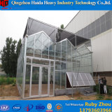 Serre van het Glas van het Frame van de Lage Kosten van China de Geprefabriceerde met Hydroponic Systemen