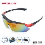 보호 안경 근시를 순환하는 도매 호환성이 있는 색안경 스포츠
