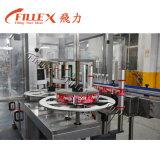De Hete Machine van uitstekende kwaliteit van de Etikettering van de Smelting OPP van de Lijm