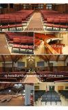 Стул церков мебели церков стальной для используемой встречи
