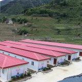 Pré-fabricadas em aço estrutural do Prédio de Depósito de oficina/Prefab House para o Office