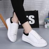 고전적인 여자 가죽 신발 운동화 (FTS1019-29)