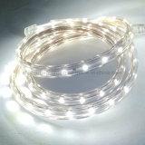spina della striscia Light+Power di 100m/Roll 110V 220V SMD 5050 LED, bianco caldo/bianco