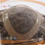 完全なレースの巻き毛のインドの毛の人のかつら(PPG-l-01494)