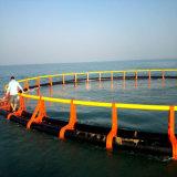 [أقوكلتثر] [ب] يعوم شبكة قفص لأنّ بعيد عن الشّاطئ [سا بسّ] يزرع