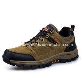 Новые мужчин в поход спортивную обувь спортивная обувь (FSY повседневный1129-12)