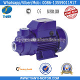 China fabrica Qb Water Clean Pump