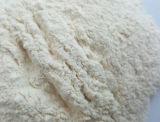 Poudre blanche déshydratée d'ail