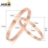 De Armband van het Roestvrij staal van de Juwelen van de Paren van de manier (hdx1064)
