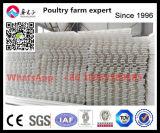 Étage en plastique de lamelle de matière première pour la Chambre de poulet