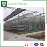 Handelsglasgewächshaus mit Wasserkultursystem