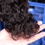 Schwarze Frauen-Wasser-Wellen-preiswerte Jungfrau-brasilianische Haar-Webart