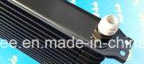AluminiumUniversa 10rows Dull schwarze Superauto-Motoröl-Kühlvorrichtung