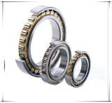 Rolamento de rolo de aço dobro das peças de automóvel de SKF Timken (N220)