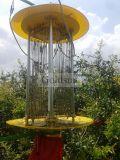 شمسيّ يزوّد حشرة قابلة مصباح في حديقة, فناء, معمل