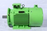 Prezzo di fabbrica a tre fasi della macchina motrice elettrica/motore di serie di IP55 Y