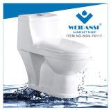 Керамические Weidansi промойте вниз S-Trap одну деталь туалета (WDS-T6117)