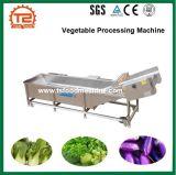 Machine de développement de nettoyeur de machine à laver de fruits et légumes végétaux de l'ozone