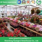 Blumen-/Frucht-/Gemüse-Zucht-Plastikfilm-grünes Haus