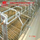 Jinfeng Design Uganda Poultry Farm Automatic Layer Chicken Cage Price