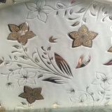 [6مّ] جليد زهرات [تيتنيز] [سلك سكرين] حفر حامض مرآة زخرفيّة