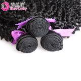 De dubbele Lange Weft Synthetische Bundels van het Haar van de Vezel van het Weefsel van het Haar van Kanekalon van de Kleur van het Haar van de Uitbreiding van het Haar Kroezige Krullende Wevende #1b Hittebestendige