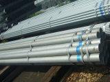 Alta qualidade Galvanized Steel Pipe e Welded Steel Pipe para Scaffolding/Greenhouse Used Galvanized Pipe