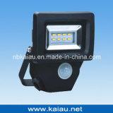 6W LED Flut-Licht (KA-FL301)