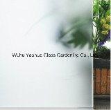 5mm, 6mm, 10mm Zuur Clea etsten Aangemaakt Glas