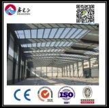 Подгонянный высоким качеством пакгауз стальной структуры (BYSS025)