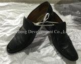 Homens & senhora usados por atacado confortáveis Sapata Esporte Sapata, sapatas de couro, sapatas de Leasure (FCD-005)