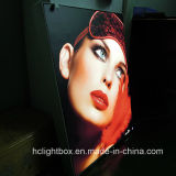 Gewebe Graphic Backlit LED Light Box Advertizing für Indoor und Outdoor
