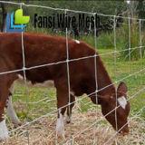"""47 """"農場の使用によって電流を通される鉄条網"""