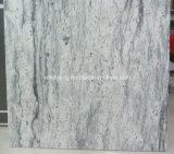 Het Witte Graniet van de droom voor Plakken, Countertops (het Wit van Kashmir, het wit van de Rivier)