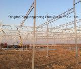 Serra prefabbricata per la tettoia della struttura d'acciaio