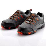 De Schoenen van de Veiligheid van de sport (l-7061)