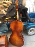 prix d'usine de violoncelle de flamme naturel pour la vente