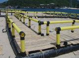 HDPE/PE Rohr und erstklassiges Papier für Aquakultur-Fischzucht-Rahmen auf dem Wasser