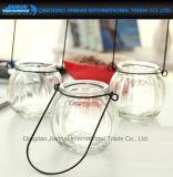 Vaso de vidro da planta da flor da abóbora com o suporte de suspensão fácil